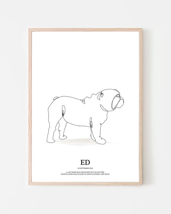 ENGLISH-BULLDOG-POSTER_590x